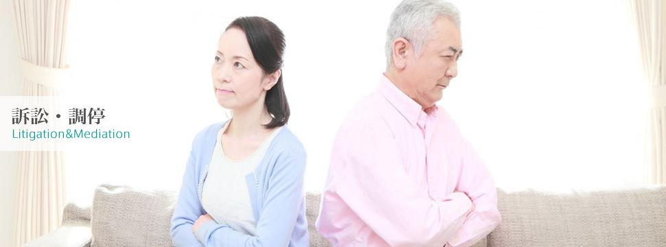 竹田朋匡司法書士事務所 - 訴訟・調停